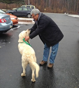 Kennel Manager Dennis Stauffer (and the rest of us!) enjoyed meeting our short-term Great Pyrenees guests.